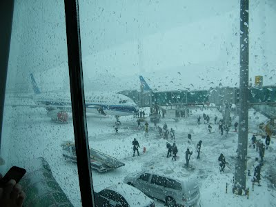 back flight caught in Dalian snow storm and had to stay in hotel for a night, count on the airline, csair.com